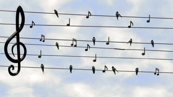 image what is the kodaly method? banner