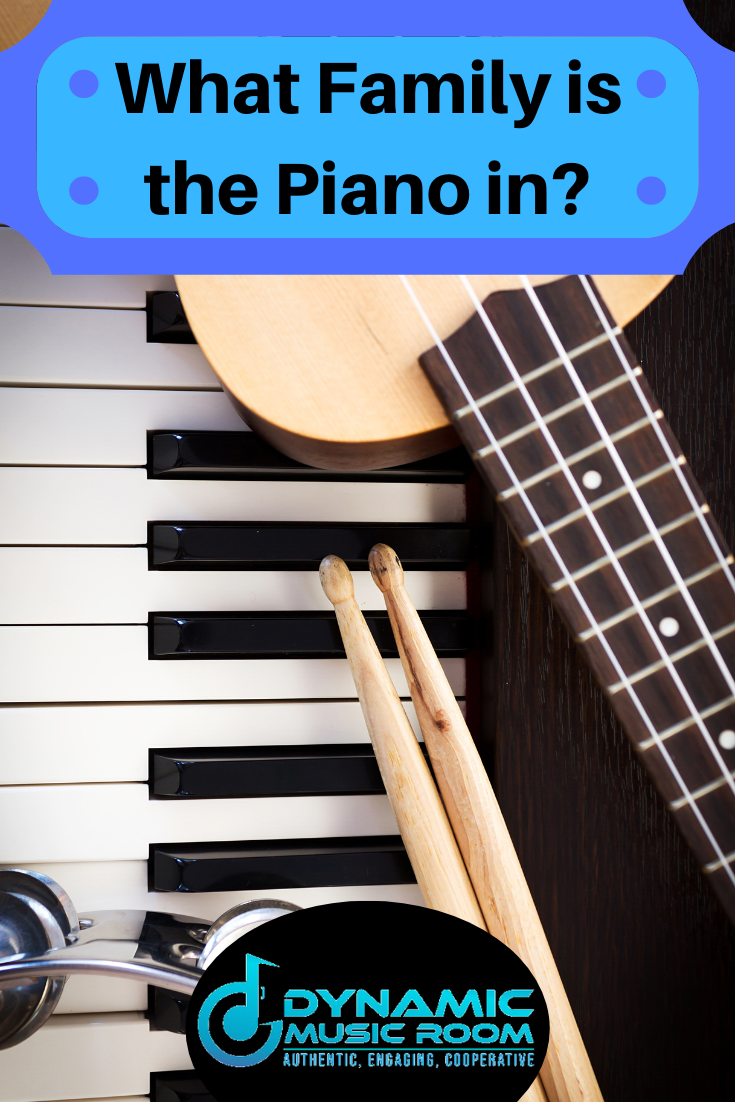 image what family is the piano in pin