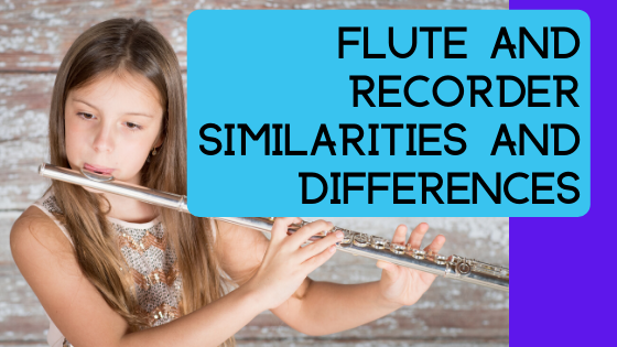 image flute and recorder similarities banner
